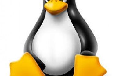 Les meilleurs vpn recommandés pour Linux