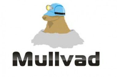 Test Mullvad VPN