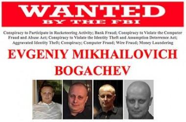 Bogachev, le plus célèbre des pirates russes traqué par le FBI !