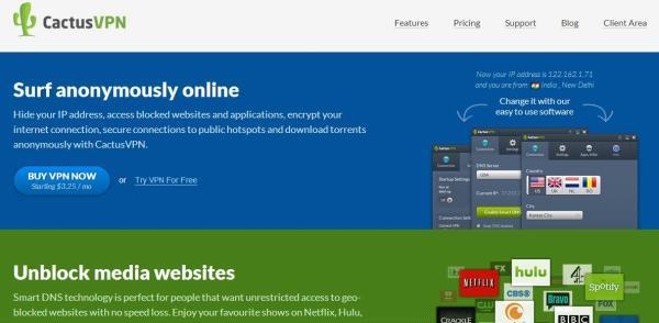 Site internet Cactus vpn