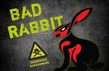 De simples conseils pour éviter d'être infecté par Bad Rabbit …